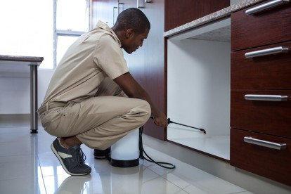 Pest Control in South Woodford, E18. Call Now! 020 8166 9746