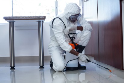 Pest Contol in South Woodford, E18. Call Now 020 8166 9746