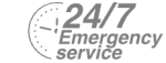 24/7 Emergency Service Pest Control in South Woodford, E18. Call Now! 020 8166 9746